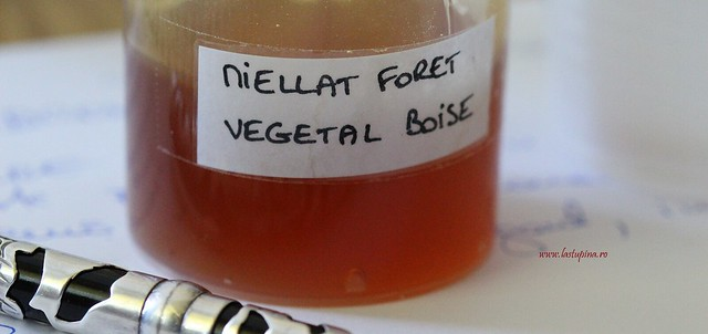 Proba de miere la cursul de degustare