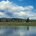 Cowlitz River & Kelso, WA