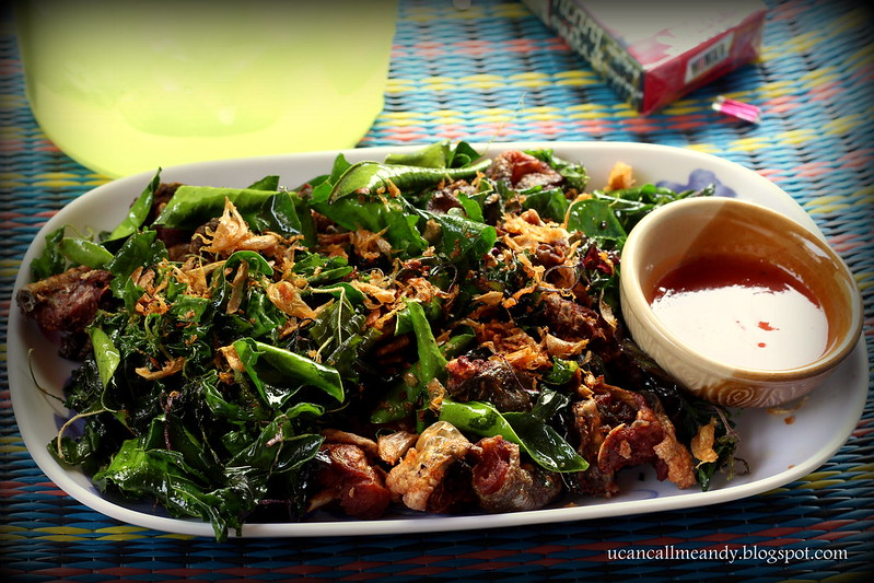 Fried frogs in Mae Sariang
