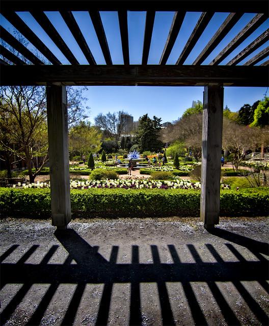 Atlanta Botanical Garden Skyline Gardens: Flickr: The Atlanta Botanical Garden Pool