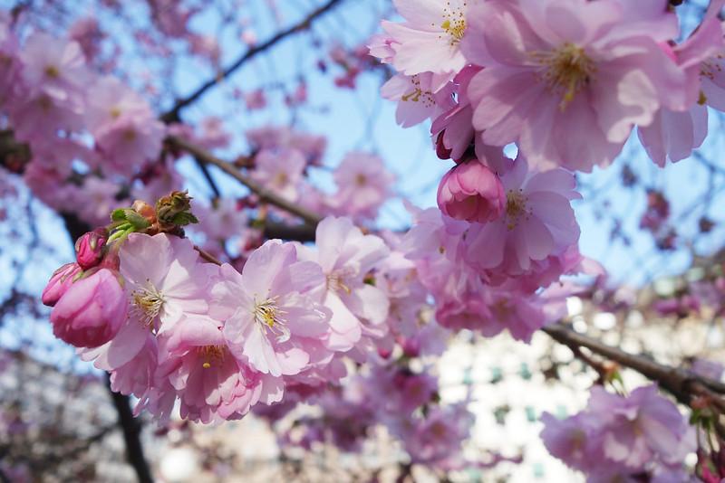 Foto-2015-04-10-17-00-40