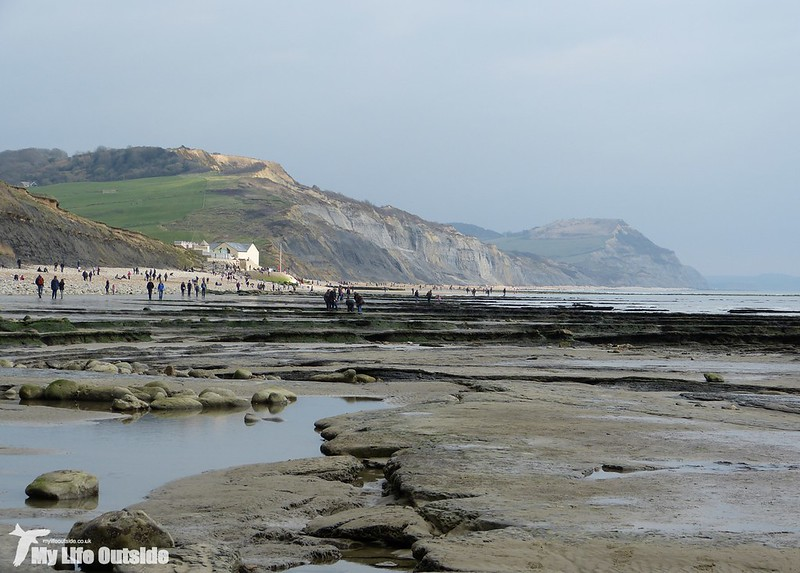 P1120101 - Charmouth