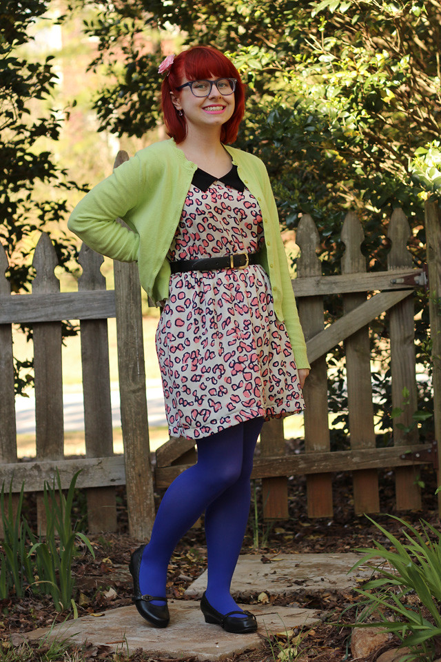 Lime Green Cardigan, Pink Leopard Print Dress, Blue Square Glasses, and Bright Blue Tights