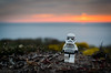 A Storm trooper sunset