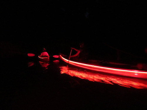 Dragon paddle!