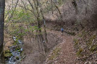 沢沿いを緩やかに登ってヤブ沢峠を目指す