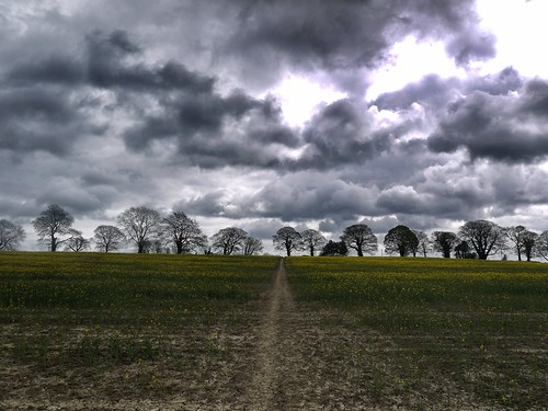 Fields under ominous skies