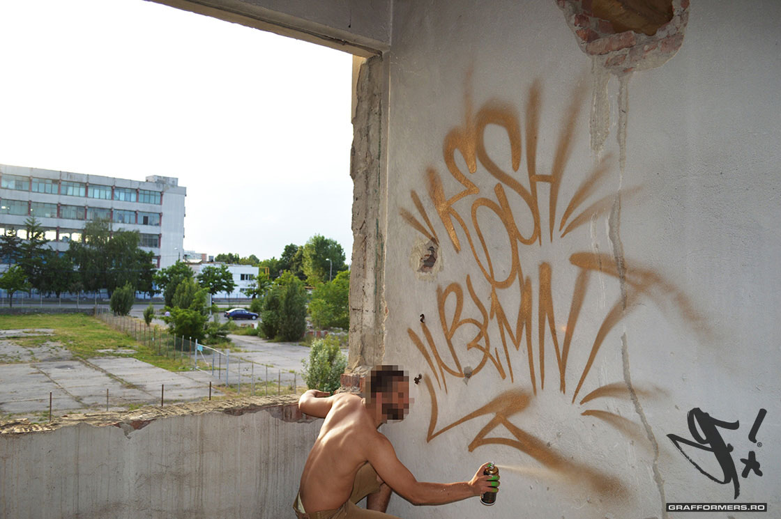 04-20140529-graffiti_circumvalatiunii_session_2-timisoara