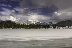 Spring Snowflakes, Molas Lake, Grenadiers.