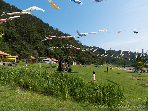 奥ヤンバル鯉のぼり祭り-56