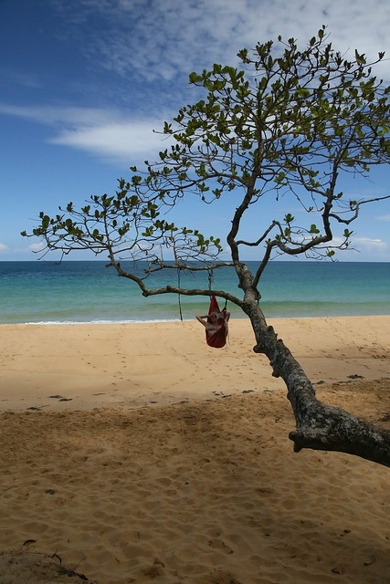 Relaxing at Playa Bluff, Isla Colon, Bocas del Toro