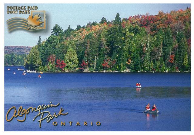 Ontario - Algonquin park