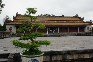 Bonsai and plaza near former royal palace
