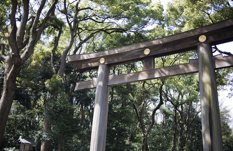 Yoyogi park, Tokyo, Japan_IMG_4946