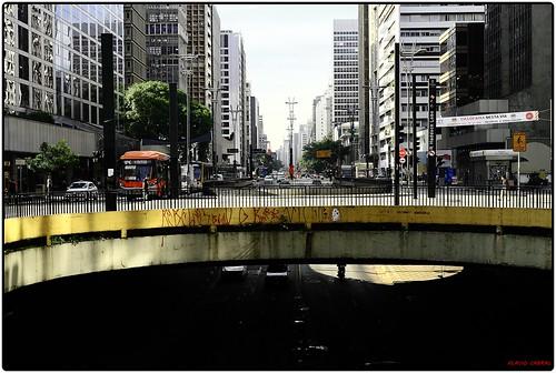 Fotojornada Av. Paulista