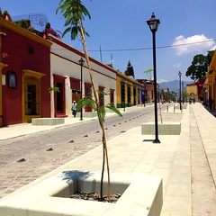 The new and renovated Garcia Vigil Street #oaxacatoday #mexiconow #pictoftheday