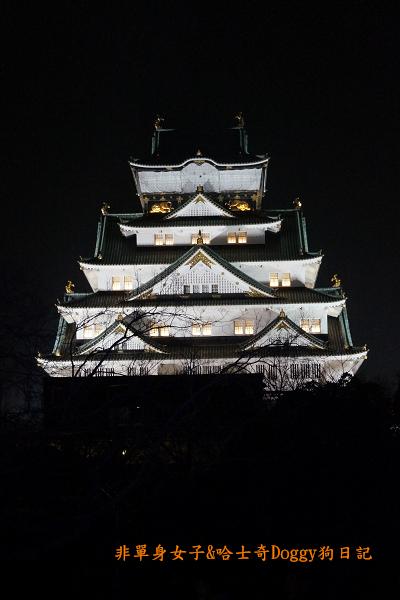 日本大阪城公園梅林城天守閣3D光之陣19