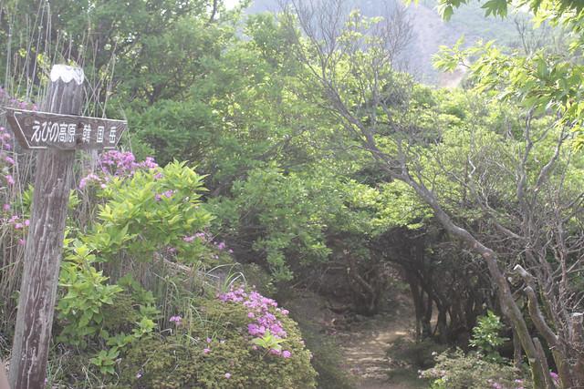 20140601-韓国岳-0062.jpg