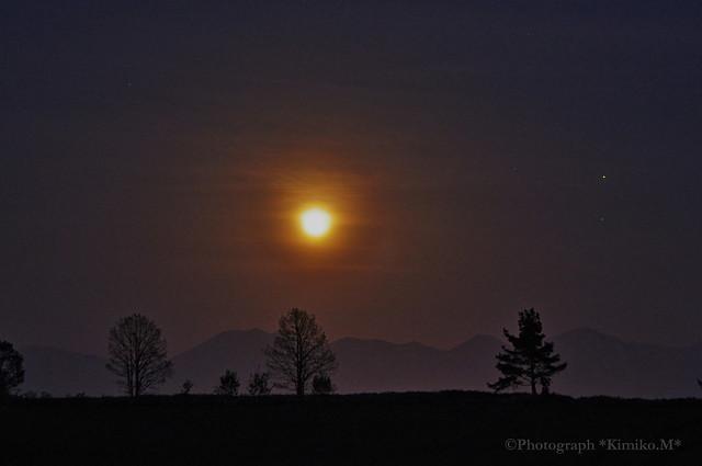 月灯りの丘