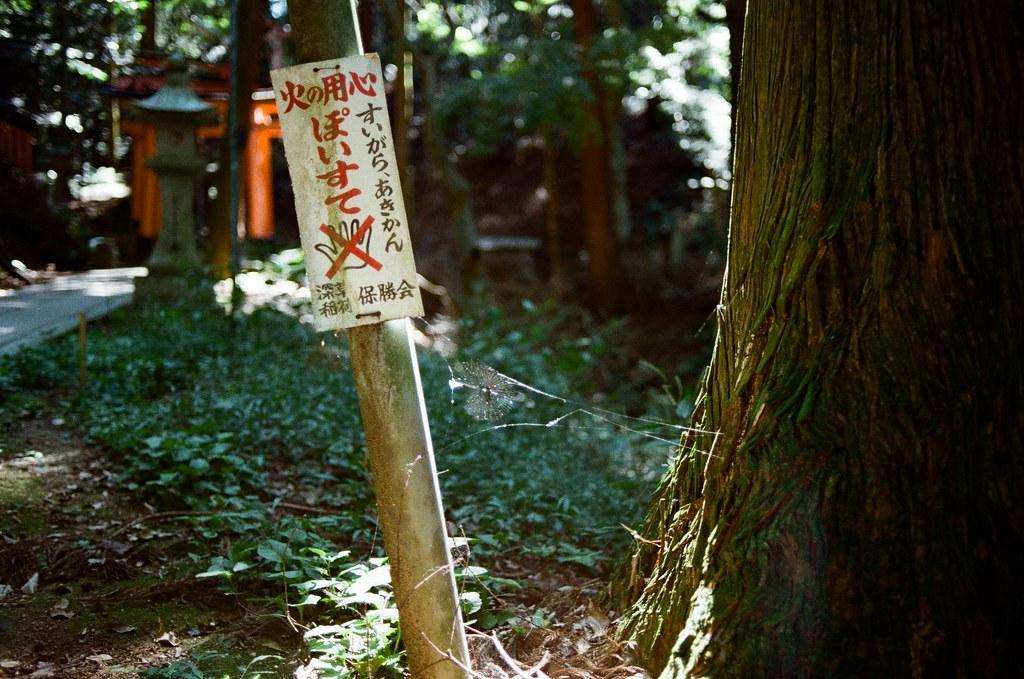 伏見稻荷 京都 Kyoto, Japan / Kodak ColorPlus / Nikon FM2 停了好段時間沒有把這段旅行的影像整理出來,時間也走的比我分享的還快。  繼續爬稻荷山,路上已經都沒有什麼人繼續爬了,那時候應該快到山頂,我一路上想說爬過了山頂應該可以實現什麼吧!  不過到後來想想,就只是單純的運動這樣。  Nikon FM2 Nikon AI AF Nikkor 35mm F/2D Kodak ColorPlus ISO200 0993-0033 2015/09/29 Photo by Toomore