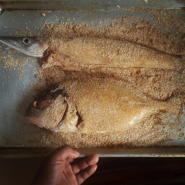 Fish - barracuda and yellow tail covered in garri & yaji (suya spice). #vscocam #vscogram #vscolife #vscodaily #vscocollections #kitchenbutterfly #instafood #newnigeriankitchen #Nigeriancuisine #Nigerianrecipes #Nigerianfood #Nigerianfoodrecipes #Naijafoo