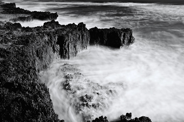 The St. Lucie Rocks, Anastasia Limestone, Ross Witham Beach, Hutchinson Island, Florida, U.S.A.