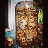 Where do you find a birdcage full of #skulls in #HumboldtCounty?