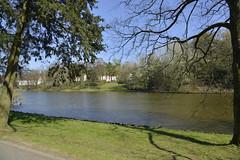 L'étang Tenreuken