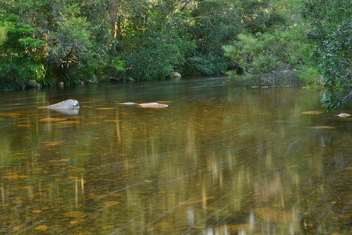 Wandandian Creek