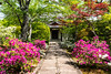 Garden at Tenryū-ji (天龍寺)