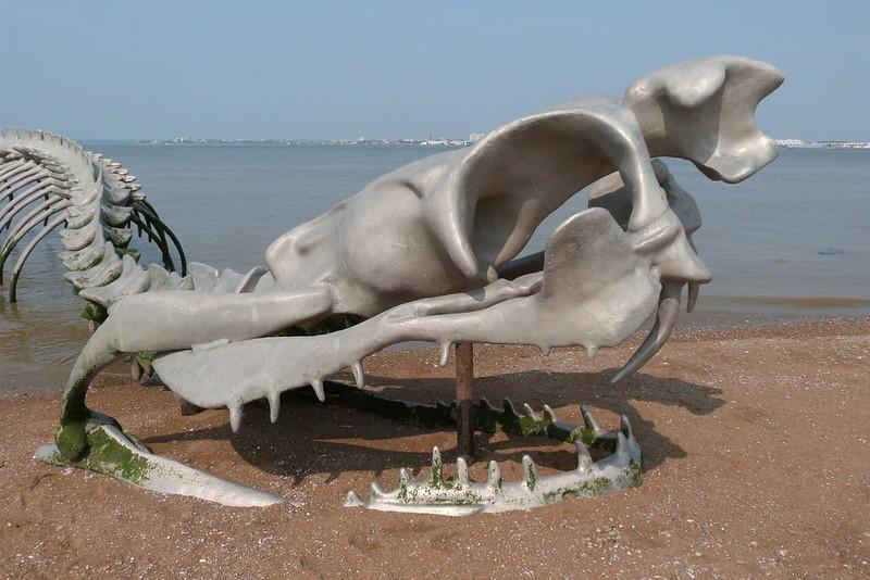 Serpent d'océan Huang Yong PING