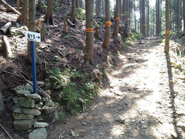 竜ヶ岳 遠足尾根入口