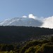 Kilimanjaro - Machame route - stock