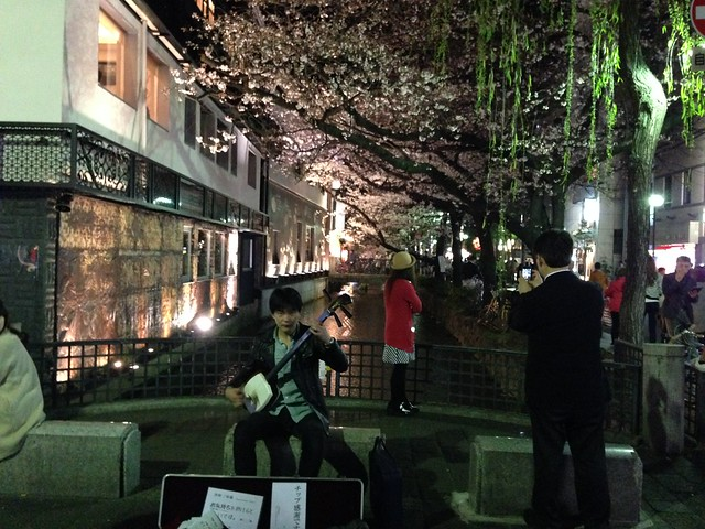 Street performer playing the shamisen in Kyoto