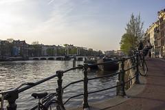 NEDERLAND - Amsterdam 059