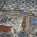 Volubilis: House of Venus, eponymous mosaic, 5