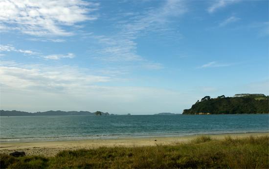 Cooks Beach and grass, Hahei 22 4 15 K55146