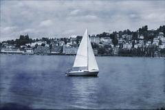 Lake Lucerne Cyanotype