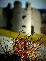 Ruins of Castle Flossenbürg 6 / Burgruine Flossenbürg