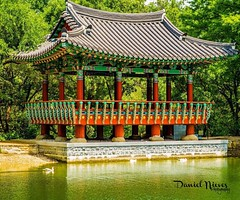 Korean pogoda at Denman Estate Park   #korean #pogoda #denmanestatepark #sanantonio #sa #satx #instapic #instagram #texas #amateurphotography #amateurphotographer #picoftheday #photography #photooftheday