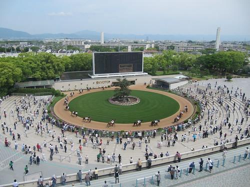 4階から見下ろす京都競馬場のパドック
