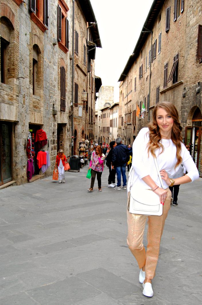 San Gimignano Tuscany (004)
