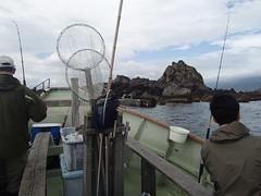 伊豆 真鶴半島 海魚釣 - naniyuutorimannen - 您说什么!
