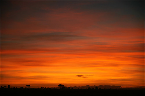 africa sky nature sunrise tanzania safari serengeti gamedrive