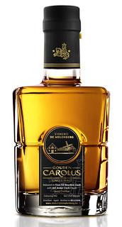 Gouden-Carolus