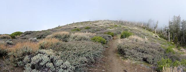 Ridgeline and fog, m364
