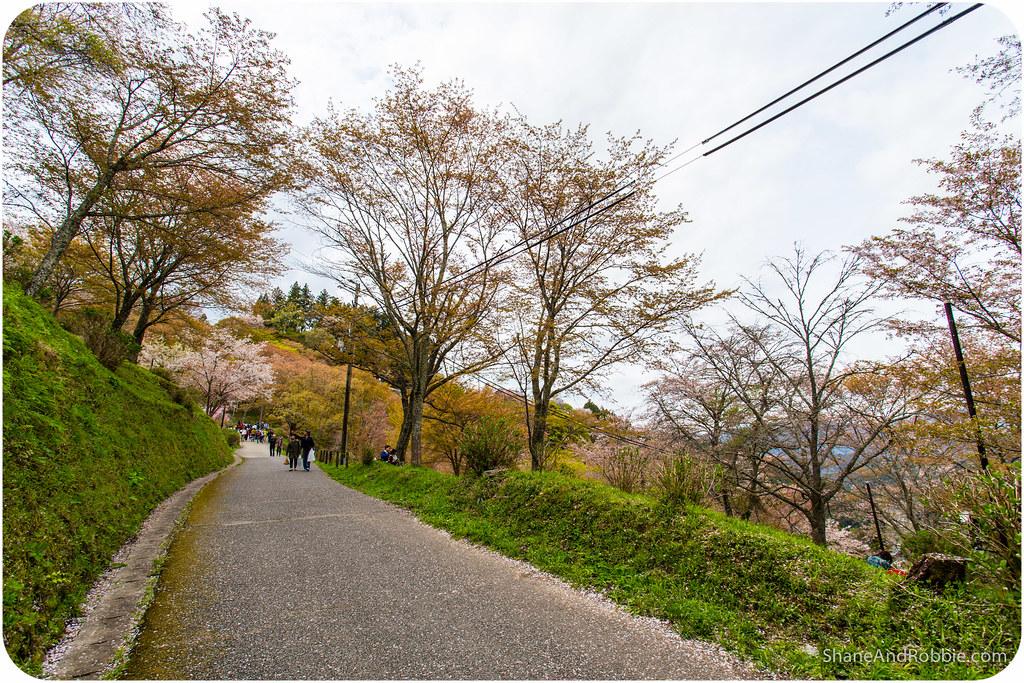 2015-04-12-20150412(Canon EOS 6D)-00039