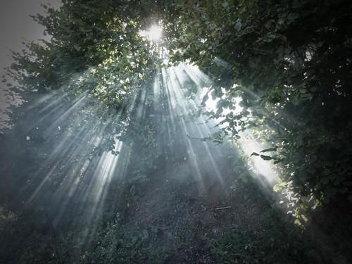 『盲点たち』写真:Pierrick Blondelet