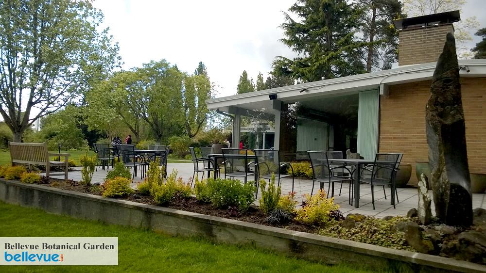 Bellevue Botanical Garden Bellevue Attractions Events