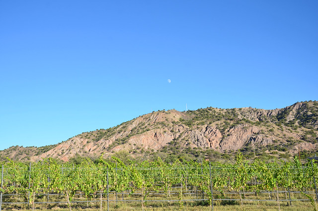 New Mexico 2014